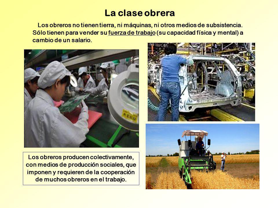 La clase obrera Los obreros no tienen tierra, ni máquinas, ni otros medios de subsistencia. Sólo tienen para vender su fuerza de trabajo (su capacidad