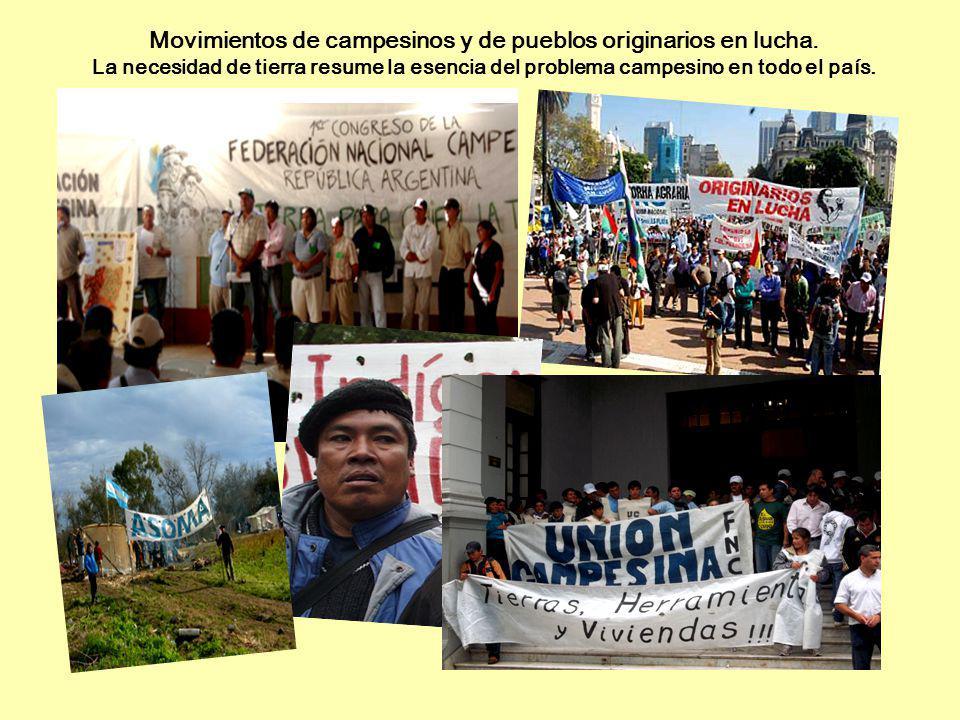 Movimientos de campesinos y de pueblos originarios en lucha. La necesidad de tierra resume la esencia del problema campesino en todo el país.