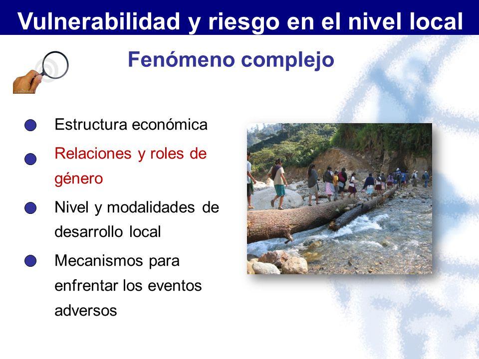 Fenómeno complejo Estructura económica Relaciones y roles de género Nivel y modalidades de desarrollo local Mecanismos para enfrentar los eventos adve