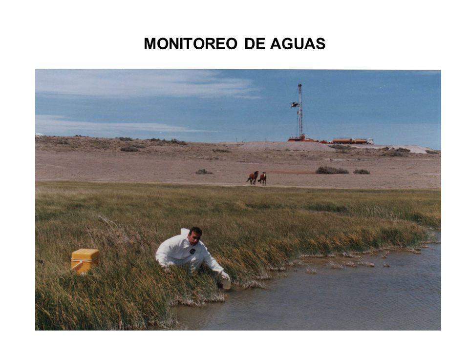 MONITOREO DE AGUAS