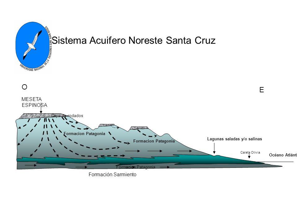 Formación Sarmiento MESETA ESPINOSA O E Sistema Acuifero Noreste Santa Cruz Formacion Patagonia Lagunas saladas y/o salinas Océano Atlántico Formacion Patagonia Caleta Olivia Capa de rodados Formacion Patagonia