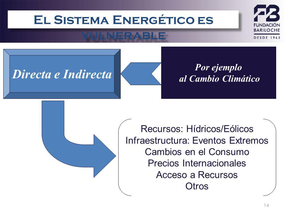 14 Directa e Indirecta Recursos: Hídricos/Eólicos Infraestructura: Eventos Extremos Cambios en el Consumo Precios Internacionales Acceso a Recursos Ot