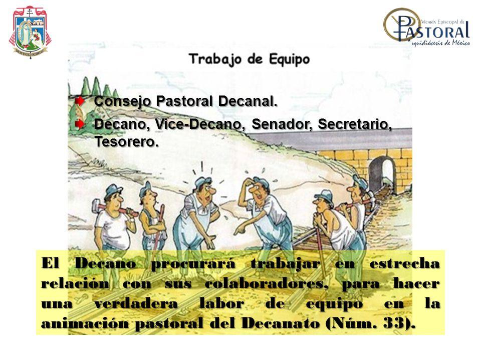 Consejo Pastoral Decanal. Decano, Vice-Decano, Senador, Secretario, Tesorero. El Decano procurará trabajar en estrecha relación con sus colaboradores,