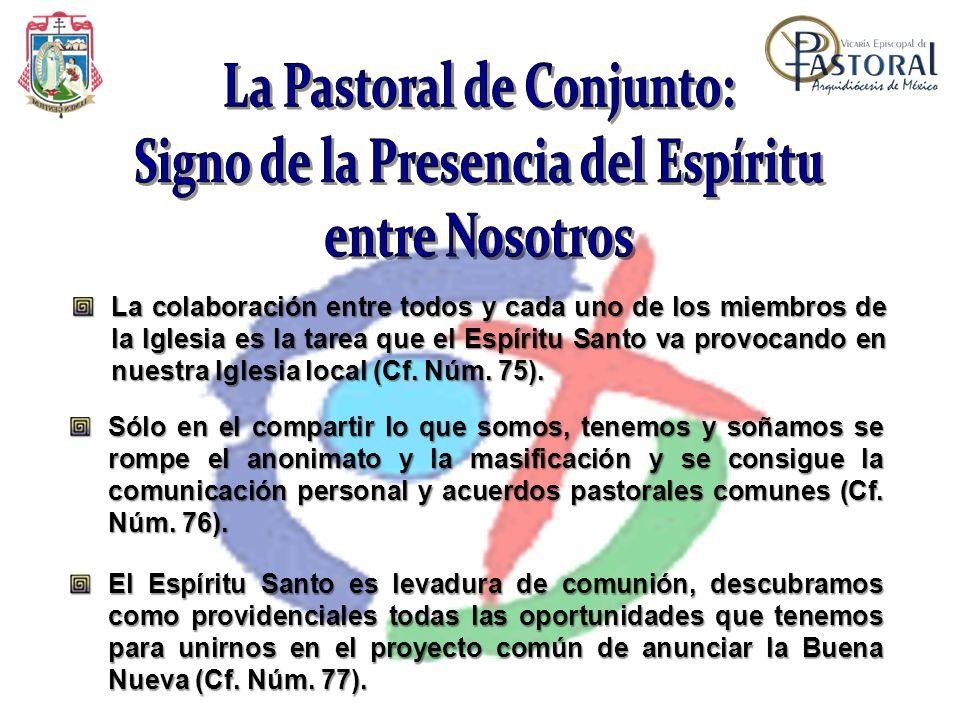 La colaboración entre todos y cada uno de los miembros de la Iglesia es la tarea que el Espíritu Santo va provocando en nuestra Iglesia local (Cf. Núm