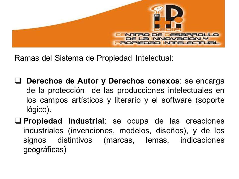 Ramas del Sistema de Propiedad Intelectual: Derechos de Autor y Derechos conexos: se encarga de la protección de las producciones intelectuales en los campos artísticos y literario y el software (soporte lógico).