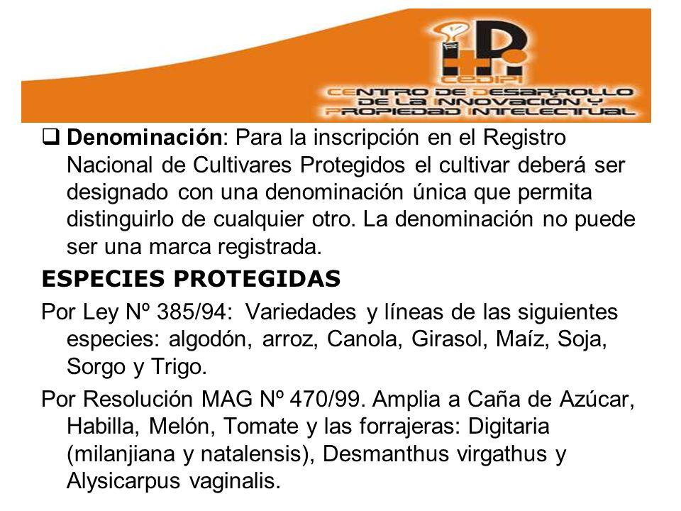 Denominación: Para la inscripción en el Registro Nacional de Cultivares Protegidos el cultivar deberá ser designado con una denominación única que permita distinguirlo de cualquier otro.