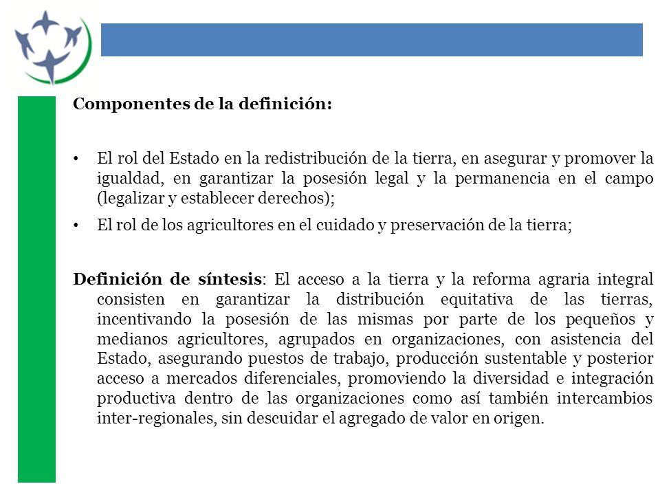 Componentes de la definición: El rol del Estado en la redistribución de la tierra, en asegurar y promover la igualdad, en garantizar la posesión legal y la permanencia en el campo (legalizar y establecer derechos); El rol de los agricultores en el cuidado y preservación de la tierra; Definición de síntesis: El acceso a la tierra y la reforma agraria integral consisten en garantizar la distribución equitativa de las tierras, incentivando la posesión de las mismas por parte de los pequeños y medianos agricultores, agrupados en organizaciones, con asistencia del Estado, asegurando puestos de trabajo, producción sustentable y posterior acceso a mercados diferenciales, promoviendo la diversidad e integración productiva dentro de las organizaciones como así también intercambios inter-regionales, sin descuidar el agregado de valor en origen.