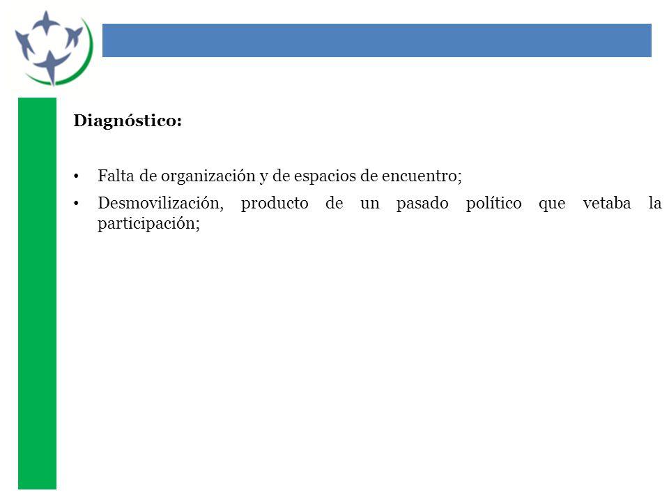 Diagnóstico: Falta de organización y de espacios de encuentro; Desmovilización, producto de un pasado político que vetaba la participación;