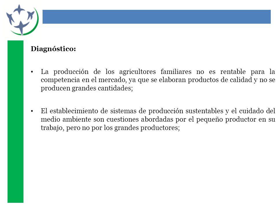 Diagnóstico: La producción de los agricultores familiares no es rentable para la competencia en el mercado, ya que se elaboran productos de calidad y no se producen grandes cantidades; El establecimiento de sistemas de producción sustentables y el cuidado del medio ambiente son cuestiones abordadas por el pequeño productor en su trabajo, pero no por los grandes productores;