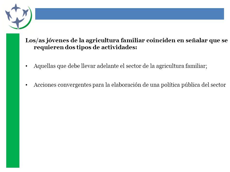 Los/as jóvenes de la agricultura familiar coinciden en señalar que se requieren dos tipos de actividades: Aquellas que debe llevar adelante el sector de la agricultura familiar; Acciones convergentes para la elaboración de una política pública del sector
