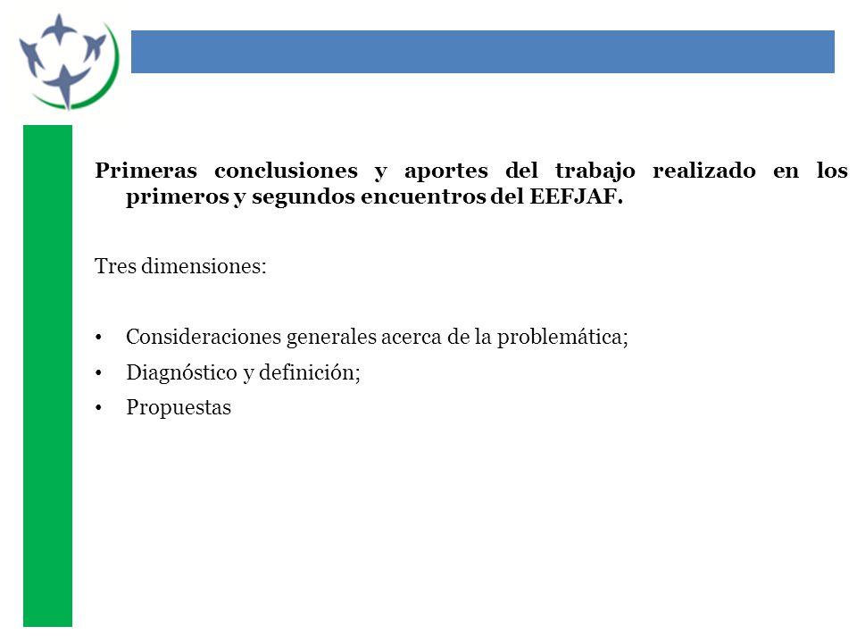 Primeras conclusiones y aportes del trabajo realizado en los primeros y segundos encuentros del EEFJAF. Tres dimensiones: Consideraciones generales ac