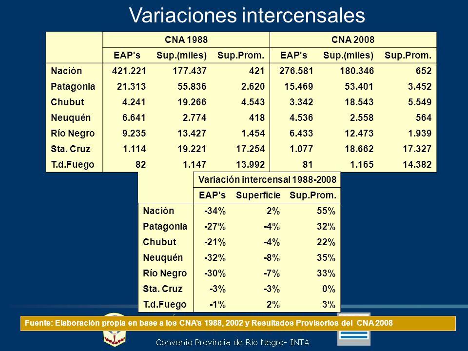 Variaciones intercensales Fuente: Elaboración propia en base a los CNAs 1988, 2002 y Resultados Provisorios del CNA 2008 CNA 1988CNA 2008 EAP sSup.(miles)Sup.Prom.EAP sSup.(miles)Sup.Prom.
