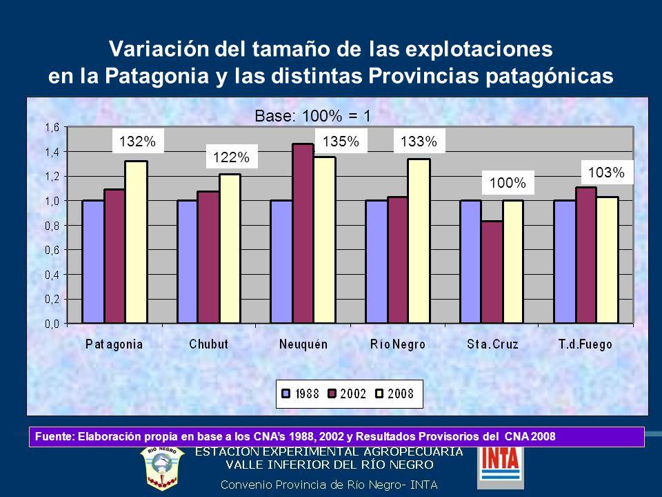 Variación del tamaño de las explotaciones en la Patagonia y las distintas Provincias patagónicas Fuente: Elaboración propia en base a los CNAs 1988, 2002 y Resultados Provisorios del CNA 2008 Base: 100% = 1 132% 122% 135%133% 100% 103%