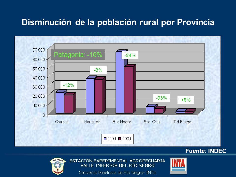 Disminución de la población rural por Provincia Fuente: INDEC Patagonia: -16% -12% -3% -24% -33% +8%