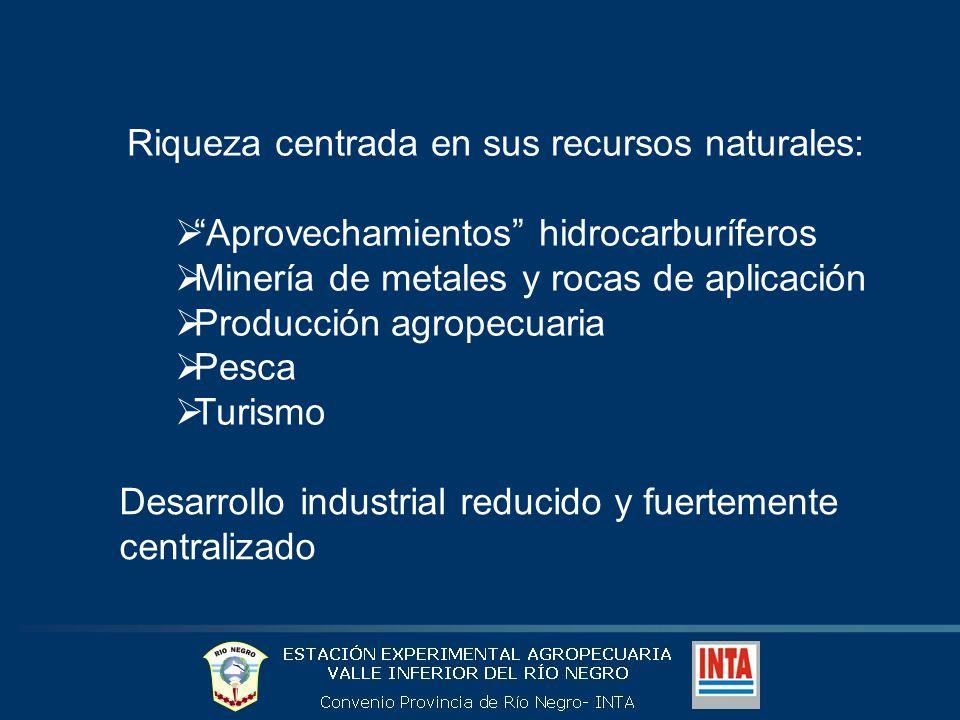 Participación por Provincias en el PBG Patagónico 2005 Total: 41.482 millones de pesos corrientes 38% 6% 23% 18% 15% Fuentes: DPEyC Nq; Foro Ambiental (TdF); DGEyC Ch; DGEyC RN; DPEyC SC