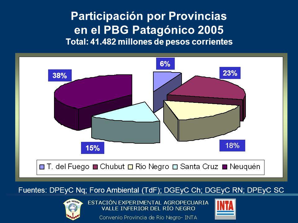 Importancia de los hidrocarburos y sector primario en el PBG de la Patagonia (2005) Hidrocarburos 45% Sector primario 4% Resto 51% Fuentes: DPEyC Nq; Foro Ambiental (TdF); DGEyC Ch; DGEyC RN; DPEyC SC Hoy gran riqueza, estratégicamente, gran amenaza