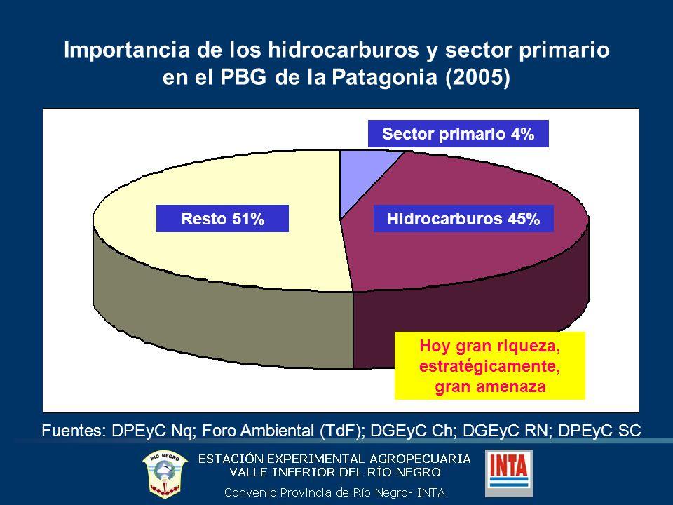 Participación de la producción de hidrocarburos y agropecuaria/pesquera, por Provincia (2005) Fuentes: DPEyC Nq; Foro Ambiental (TdF); DGEyC Ch; DGEyC RN; DPEyC SC