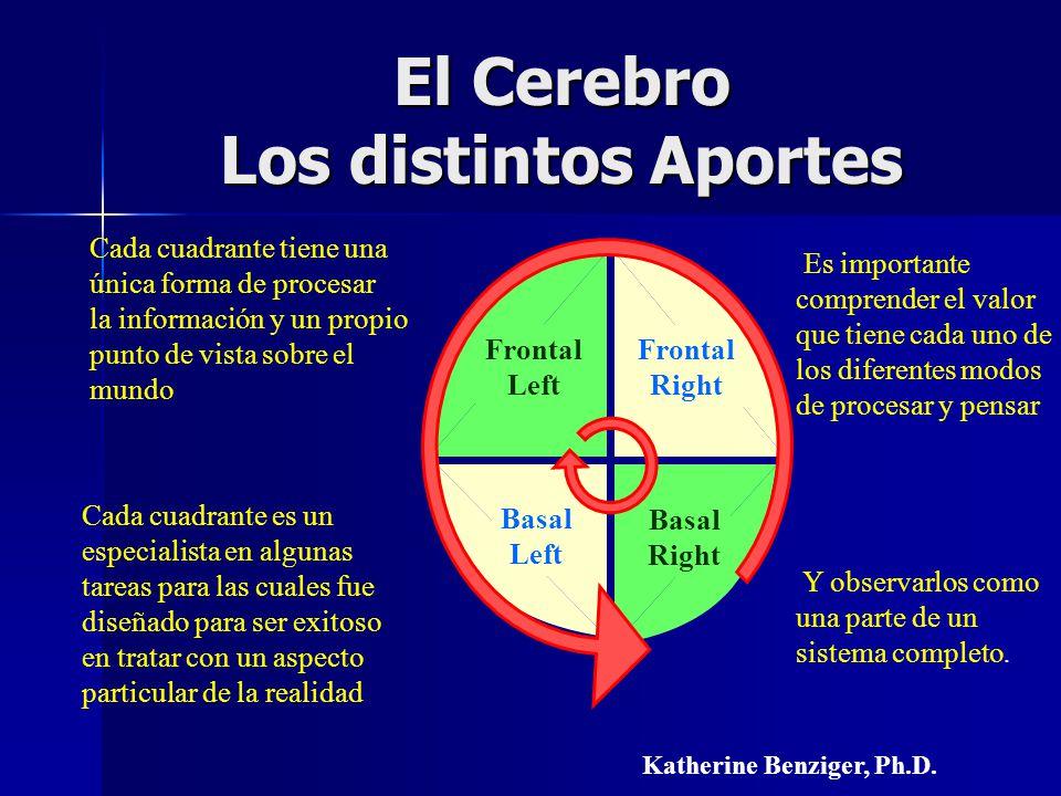 El Cerebro Los distintos Aportes Frontal Right Frontal Left Basal Left Basal Right Cada cuadrante tiene una única forma de procesar la información y u