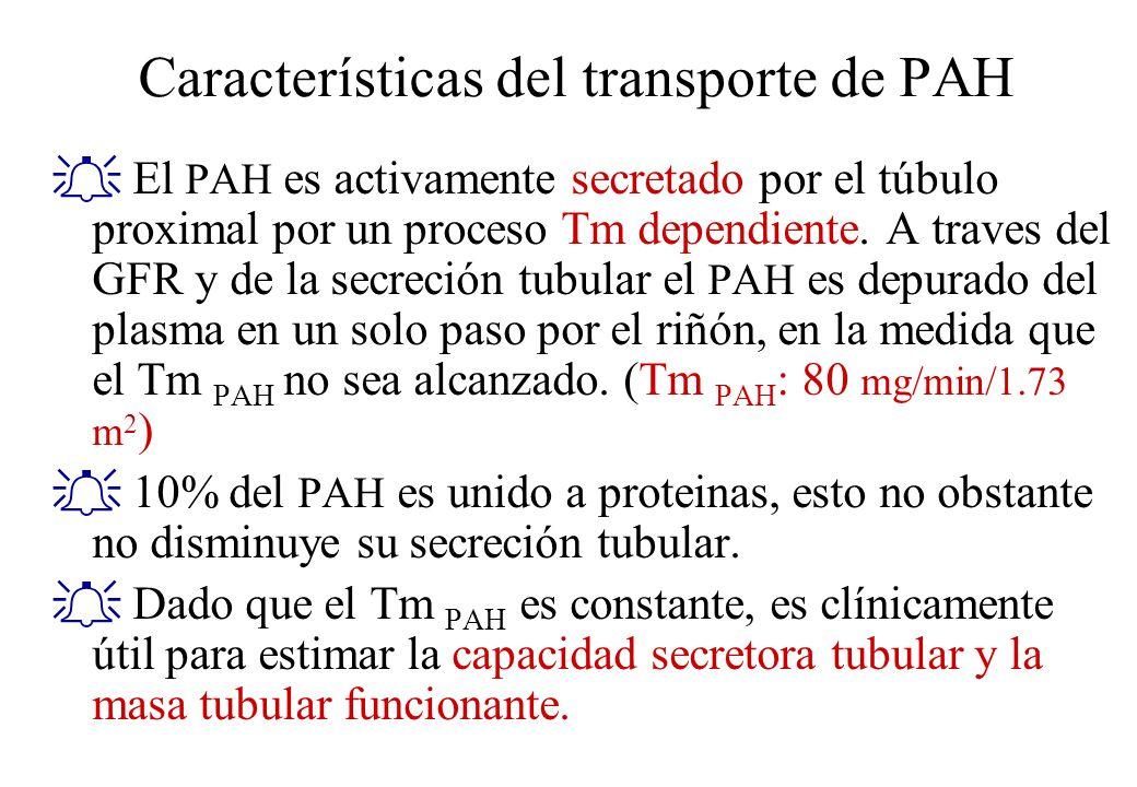 Características del transporte de PAH El PAH es activamente secretado por el túbulo proximal por un proceso Tm dependiente. A traves del GFR y de la s
