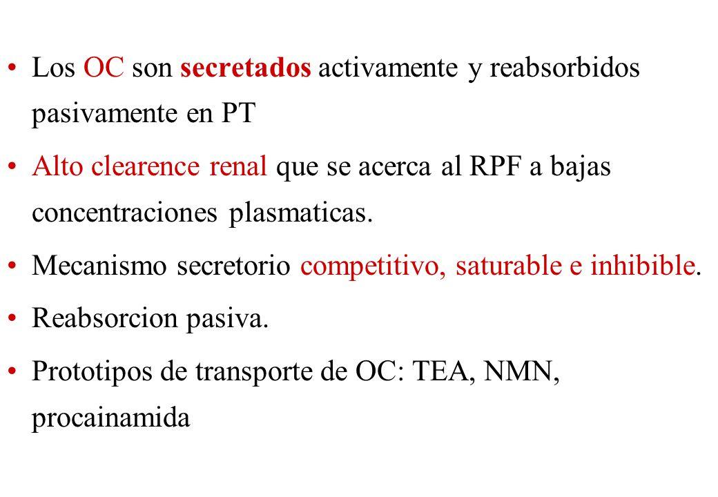 Los OC son secretados activamente y reabsorbidos pasivamente en PT Alto clearence renal que se acerca al RPF a bajas concentraciones plasmaticas. Meca