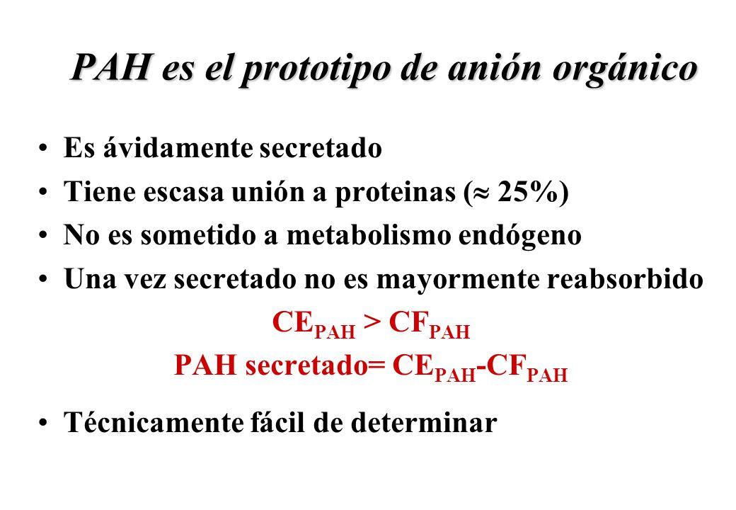 PAH es el prototipo de anión orgánico Es ávidamente secretado Tiene escasa unión a proteinas ( 25%) No es sometido a metabolismo endógeno Una vez secr