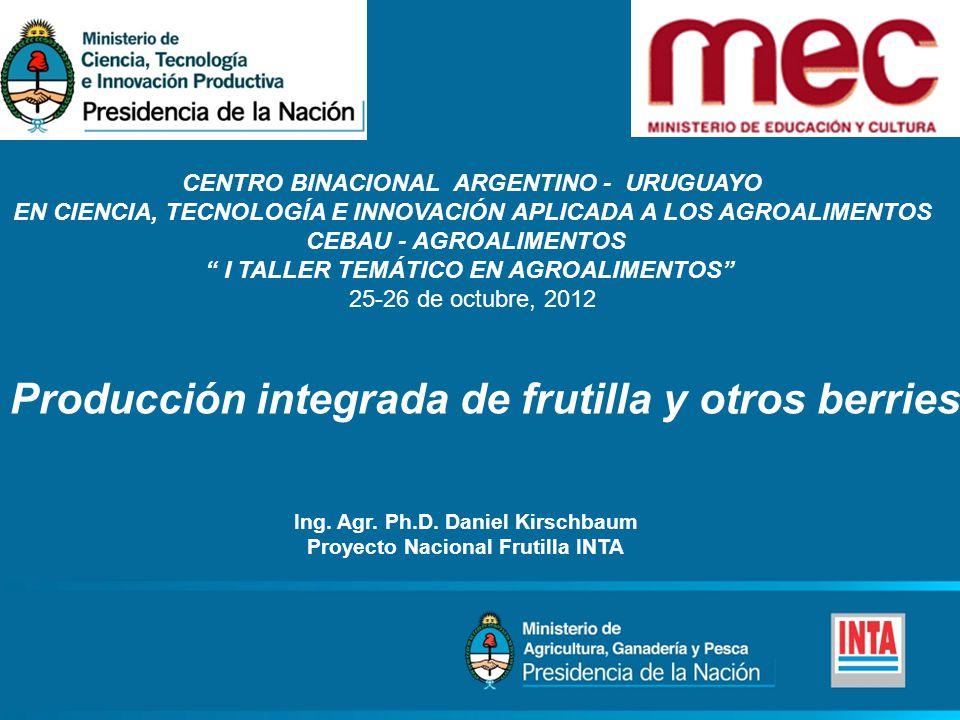 CENTRO BINACIONAL ARGENTINO - URUGUAYO EN CIENCIA, TECNOLOGÍA E INNOVACIÓN APLICADA A LOS AGROALIMENTOS CEBAU - AGROALIMENTOS I TALLER TEMÁTICO EN AGROALIMENTOS 25-26 de octubre, 2012 Producción integrada de frutilla y otros berries Ing.