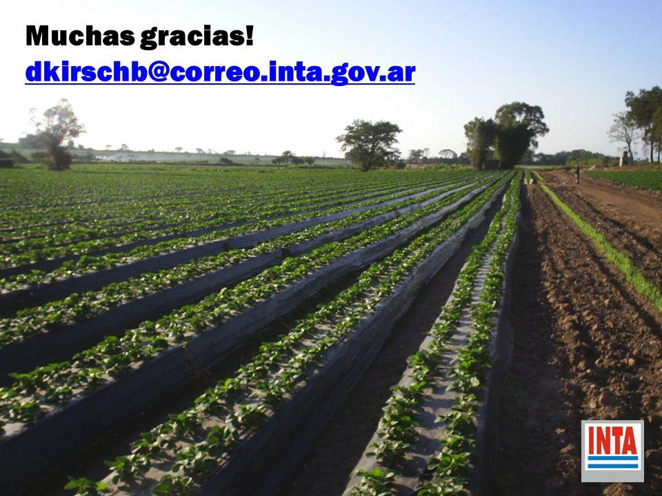 Muchas gracias! dkirschb@correo.inta.gov.ar