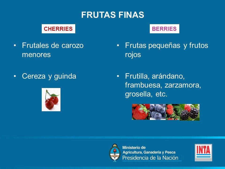 FRUTAS FINAS Frutales de carozo menores Cereza y guinda Frutas pequeñas y frutos rojos Frutilla, arándano, frambuesa, zarzamora, grosella, etc.
