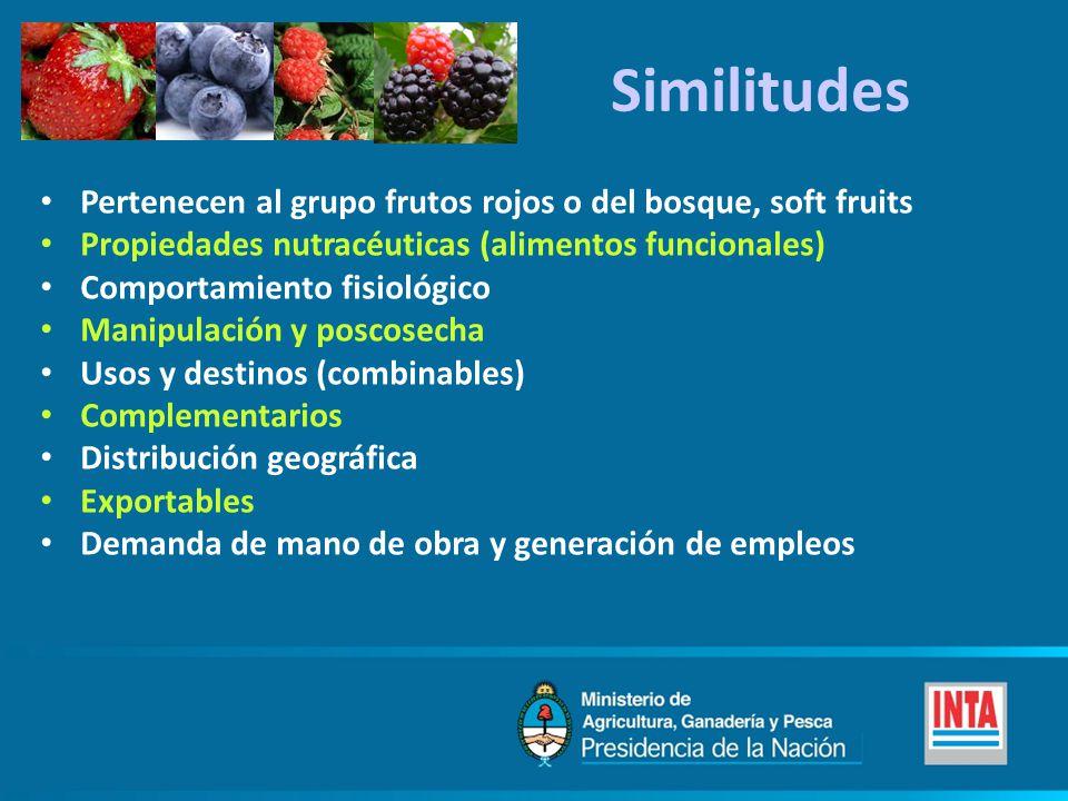 Similitudes Pertenecen al grupo frutos rojos o del bosque, soft fruits Propiedades nutracéuticas (alimentos funcionales) Comportamiento fisiológico Ma