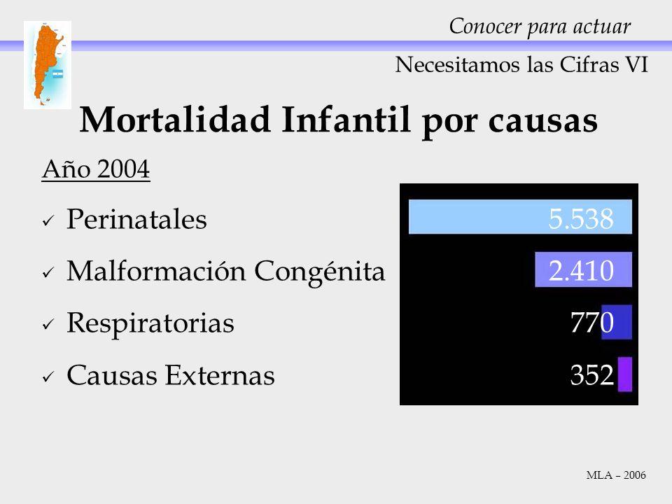Necesitamos las Cifras VI Conocer para actuar Mortalidad Infantil por causas MLA – 2006 Año 2004 Perinatales5.538 Malformación Congénita2.410 Respirat