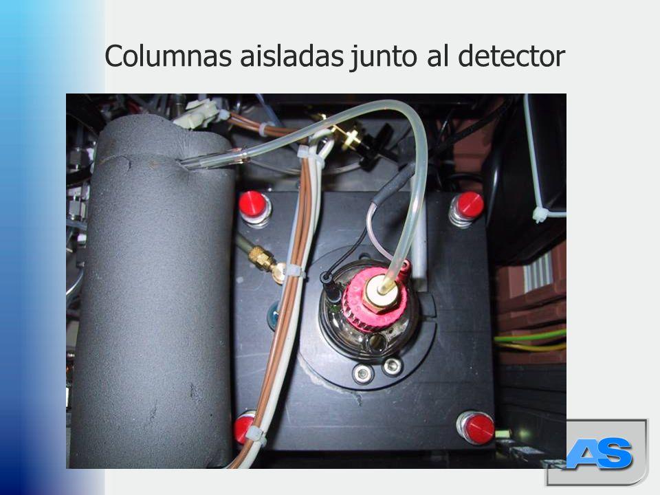 48 Columnas aisladas junto al detector