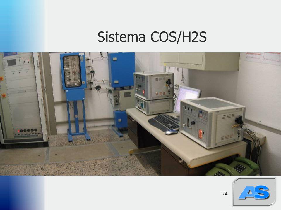 74 Sistema COS/H2S