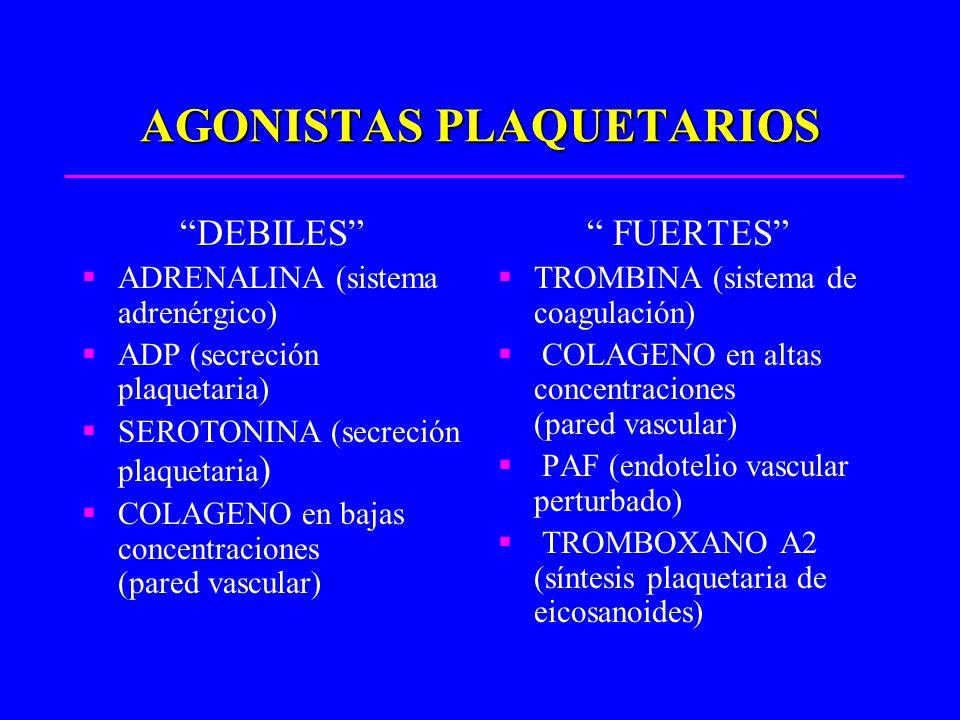 AGONISTAS PLAQUETARIOS DEBILES ADRENALINA (sistema adrenérgico) ADP (secreción plaquetaria) SEROTONINA (secreción plaquetaria ) COLAGENO en bajas conc