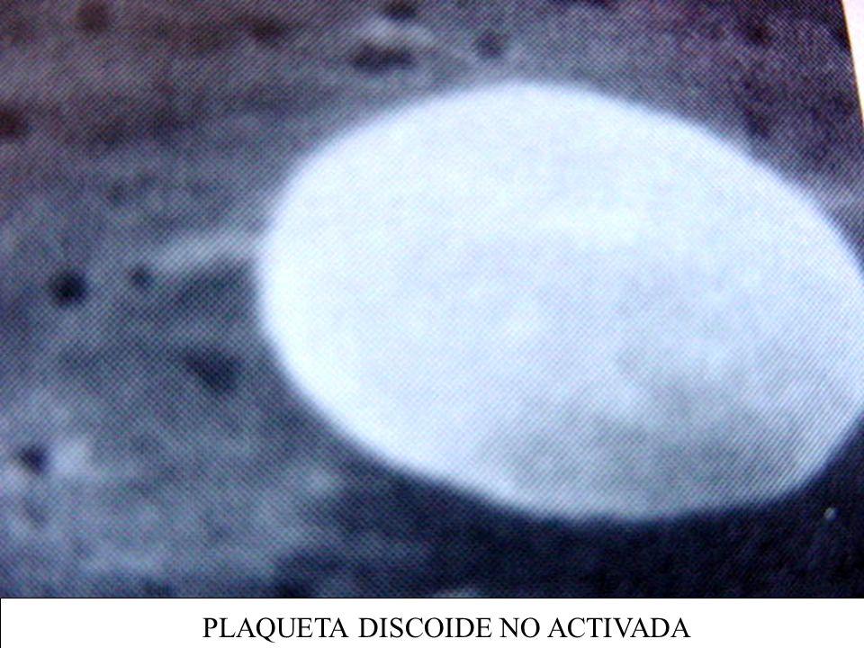 PLAQUETA DISCOIDE NO ACTIVADA