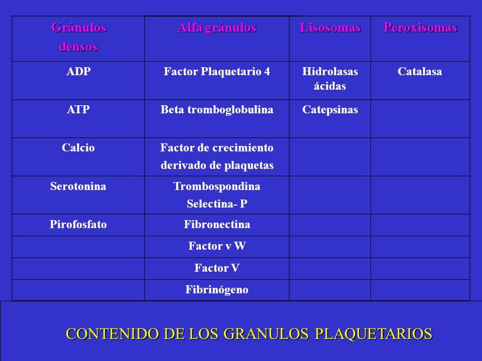Gránulosdensos Alfa gránulos LisosomasPeroxisomas ADPFactor Plaquetario 4Hidrolasas ácidas Catalasa ATPBeta tromboglobulinaCatepsinas CalcioFactor de