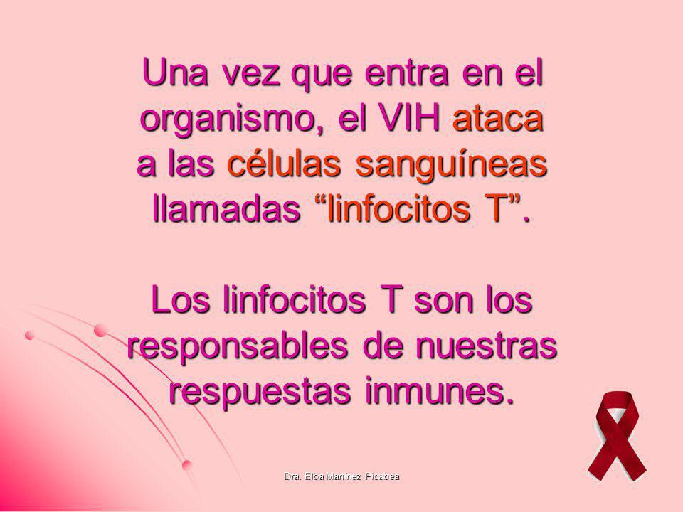 Dra. Elba Martínez Picabea Una vez que entra en el organismo, el VIH ataca a las células sanguíneas llamadas linfocitos T. Los linfocitos T son los re