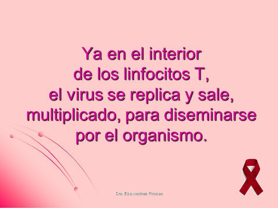 Dra. Elba Martínez Picabea Ya en el interior de los linfocitos T, el virus se replica y sale, multiplicado, para diseminarse por el organismo.