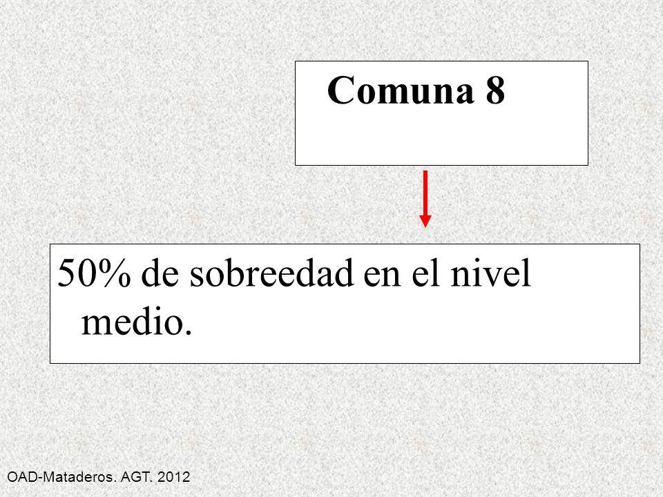 50% de sobreedad en el nivel medio. Comuna 8 OAD-Mataderos. AGT. 2012