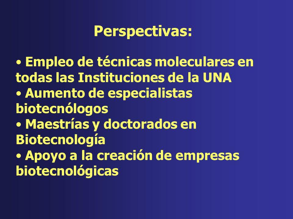 Empleo de técnicas moleculares en todas las Instituciones de la UNA Aumento de especialistas biotecnólogos Maestrías y doctorados en Biotecnología Apo