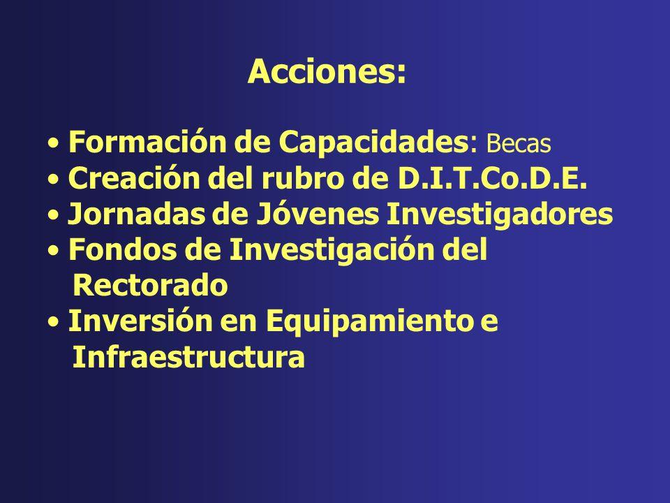 Instituciones: 7 (4 Facultades y 3 Institutos) Investigadores: 45 profesionales Investigadores de Dedicación Exclusiva: 12 Proyectos en ejecución: 20 Publicaciones: 12