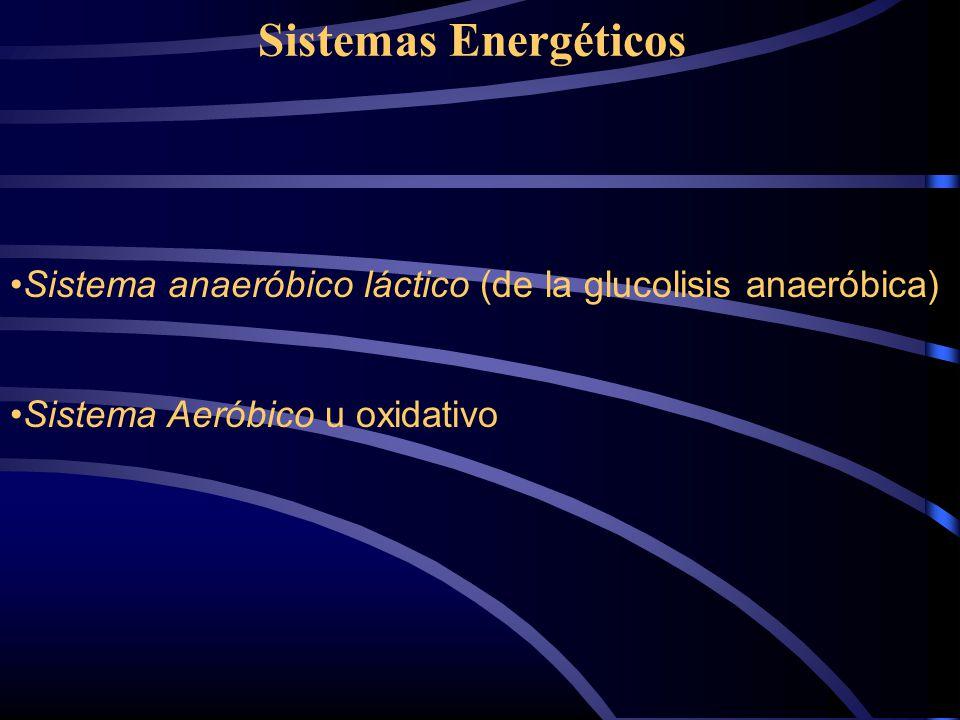 Sistemas Energéticos Sistema anaeróbico láctico (de la glucolisis anaeróbica) Sistema Aeróbico u oxidativo