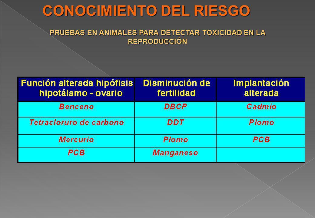 CONOCIMIENTO DEL RIESGO PRUEBAS EN ANIMALES PARA DETECTAR TOXICIDAD EN LA REPRODUCCIÓN