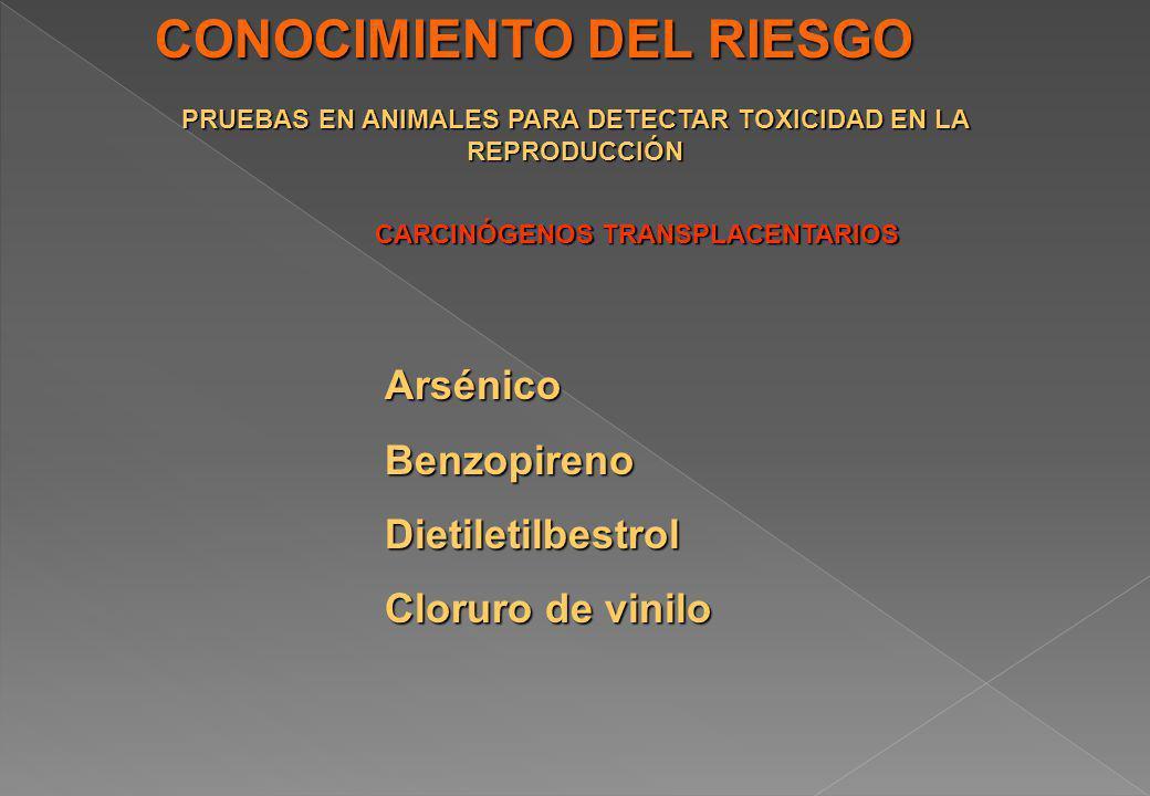 CONOCIMIENTO DEL RIESGO PRUEBAS EN ANIMALES PARA DETECTAR TOXICIDAD EN LA REPRODUCCIÓN CARCINÓGENOS TRANSPLACENTARIOS ArsénicoBenzopirenoDietiletilbes