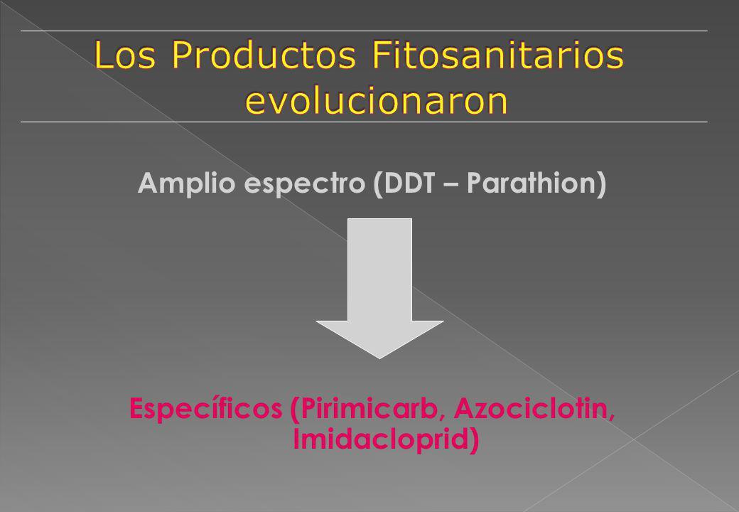 Amplio espectro (DDT – Parathion) Específicos (Pirimicarb, Azociclotin, Imidacloprid)