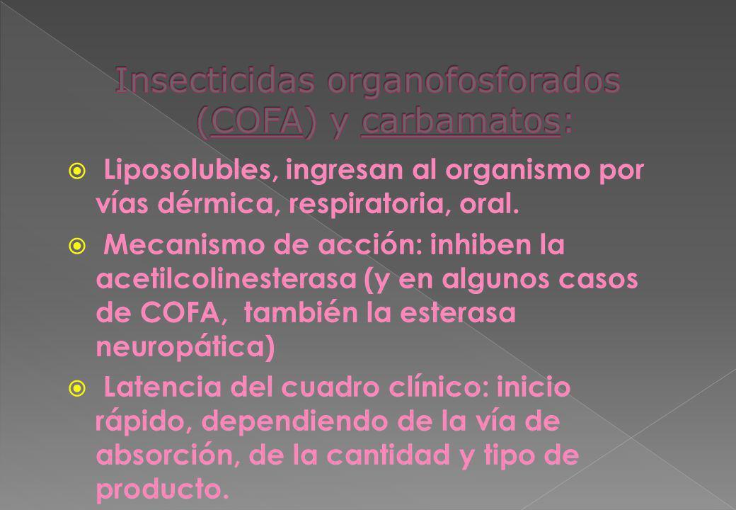 Liposolubles, ingresan al organismo por vías dérmica, respiratoria, oral. Mecanismo de acción: inhiben la acetilcolinesterasa (y en algunos casos de C
