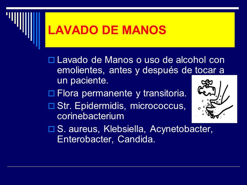 LAVADO DE MANOS Lavado de Manos o uso de alcohol con emolientes, antes y después de tocar a un paciente. Flora permanente y transitoria. Str. Epidermi