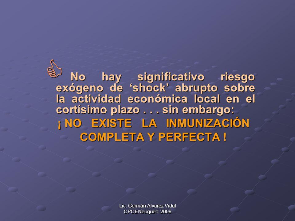 Lic. Germán Alvarez Vidal CPCENeuquén 2008 No hay significativo riesgo exógeno de shock abrupto sobre la actividad económica local en el cortísimo pla