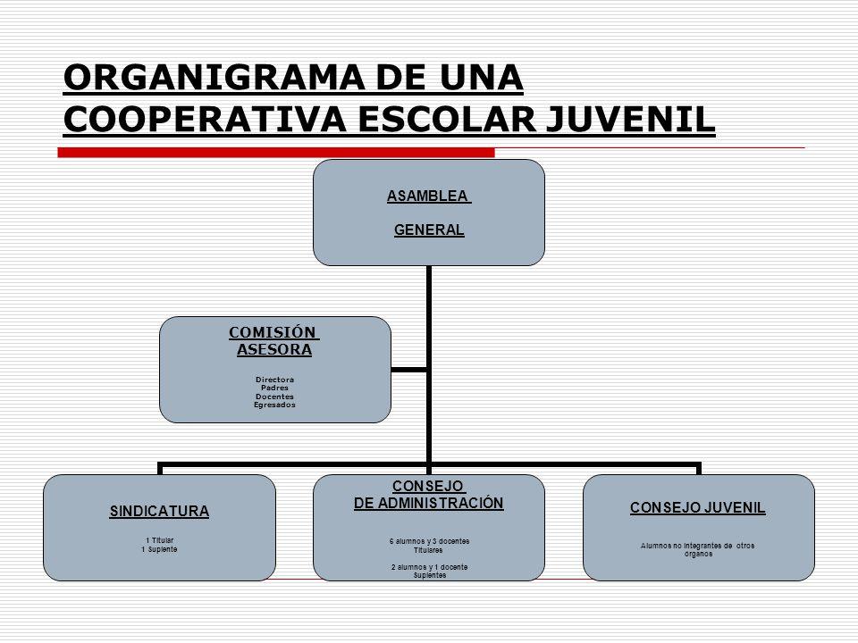 ORGANIGRAMA DE UNA COOPERATIVA ESCOLAR JUVENIL ASAMBLEA GENERAL SINDICATURA 1 Titular 1 Suplente CONSEJO DE ADMINISTRACIÓN 6 alumnos y 3 docentes Titu