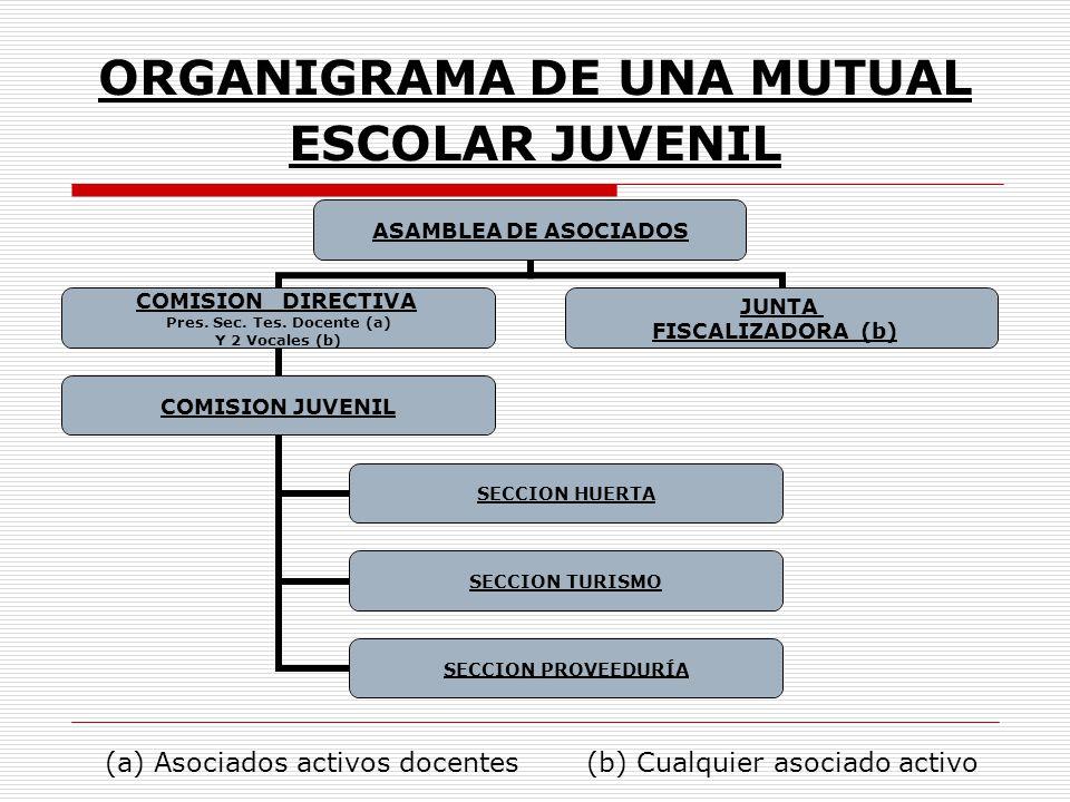 ORGANIGRAMA DE UNA MUTUAL ESCOLAR JUVENIL ASAMBLEA DE ASOCIADOS COMISION DIRECTIVA Pres. Sec. Tes. Docente (a) Y 2 Vocales (b) COMISION JUVENIL SECCIO