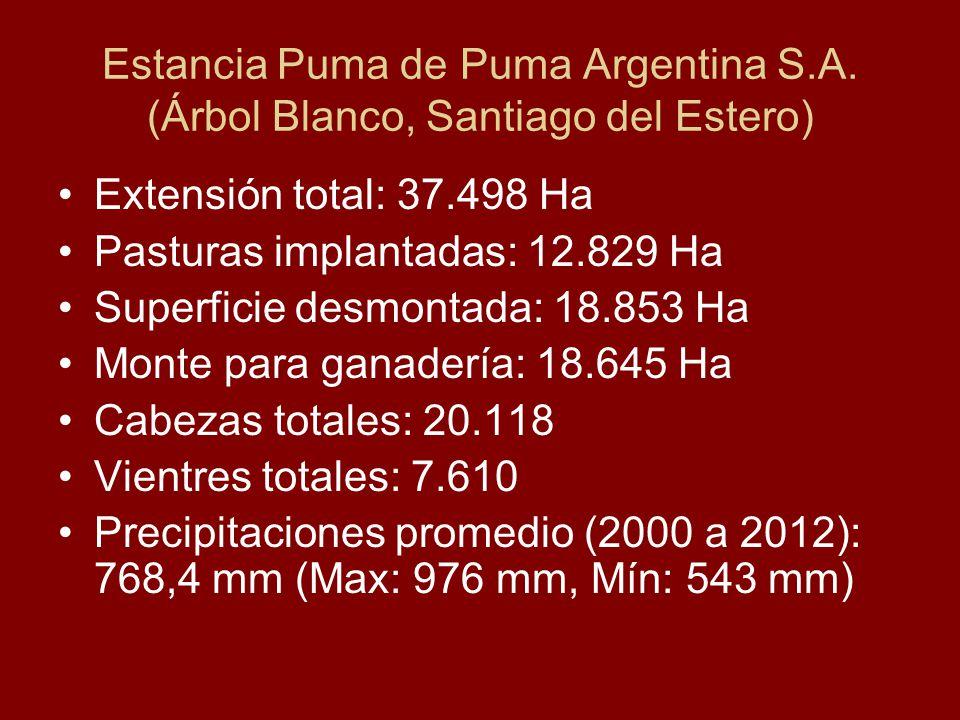 Estancia Puma de Puma Argentina S.A. (Árbol Blanco, Santiago del Estero) Extensión total: 37.498 Ha Pasturas implantadas: 12.829 Ha Superficie desmont